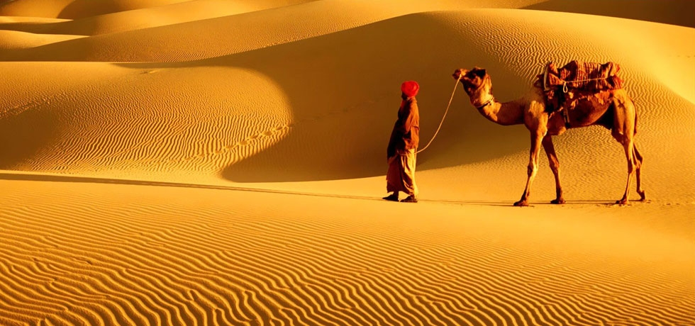 Beauty of the Thar Desert, Rajasthan, India